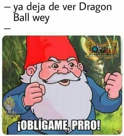 memes de obligame prro