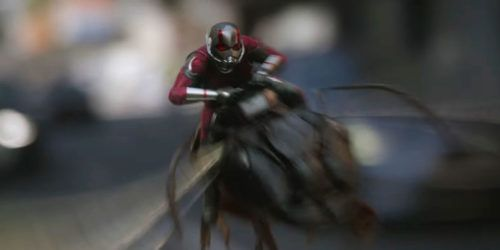 ant man and the wasp / ant man 2