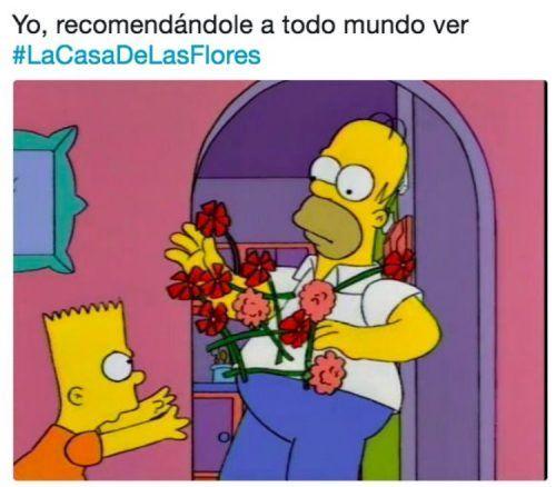 memes de la casa de las flores