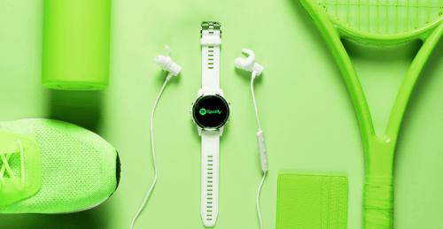 Spotify en Garmin