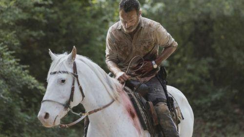 películas de The Walking Dead