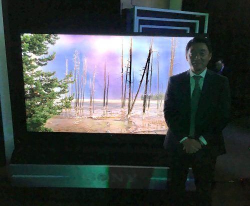 Así son los nuevos televisores Sony 2019 en México.